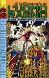 Cover for Il Settimanale de L'Uomo Ragno (Editoriale Corno, 1981 series) #42