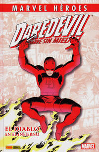 Cover Thumbnail for Coleccionable Marvel Héroes (Panini España, 2010 series) #20