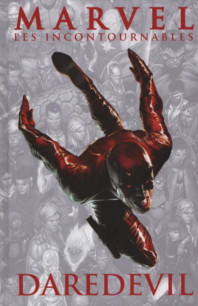 Cover for Marvel : Les Incontournables (Panini France, 2008 series) #7 [album]
