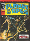 Cover for Planet of the Apes (Marvel UK, 1974 series) #39
