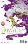 Cover for The Unwritten (DC, 2009 series) #38