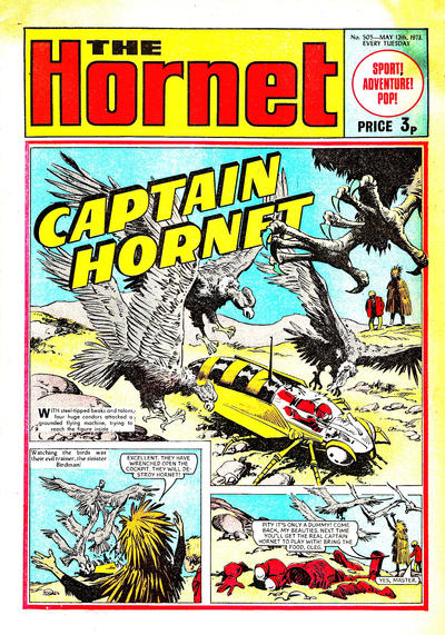 Cover for The Hornet (D.C. Thomson, 1963 series) #505