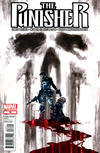 Cover for The Punisher (Marvel, 2011 series) #16