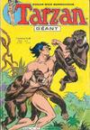 Cover for Tarzan Geant (Sage - Sagédition, 1969 series) #54