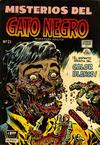 Cover for Misterios del Gato Negro (Editora de Periódicos La Prensa S.C.L., 1953 series) #21