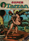 Cover for Tarzan Super (Sage - Sagédition, 1973 series) #11