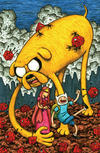 Cover for Adventure Time (Boom! Studios, 2012 series) #1 [Cover D by Jeffrey Brown]