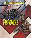Cover for Commando (D.C. Thomson, 1961 series) #1206
