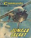 Cover for Commando (D.C. Thomson, 1961 series) #1213