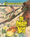 Cover for Commando (D.C. Thomson, 1961 series) #1339