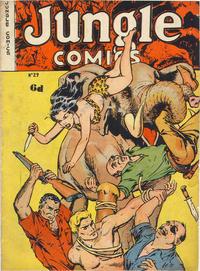 Cover Thumbnail for Jungle Comics (H. John Edwards, 1950 ? series) #29