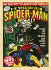 Cover for The Spectacular Spider-Man Weekly (Marvel UK, 1979 series) #350