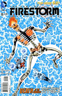 Cover Thumbnail for Fury of the Firestorms: The Nuclear Men (DC, 2011 series) #15