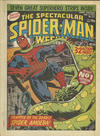 Cover for The Spectacular Spider-Man Weekly (Marvel UK, 1979 series) #337