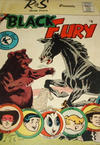 Cover for Black Fury (Charlton, 1959 series) #6