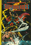 Cover for Marvel Presents the Superheroes Annual (Grandreams, 1979 series) #1979