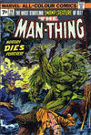Cover for Man-Thing (Marvel, 1974 series) #10 [British]