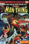 Cover for Man-Thing (Marvel, 1974 series) #11 [British]