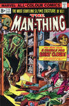 Cover for Man-Thing (Marvel, 1974 series) #15 [British]