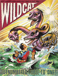 Cover Thumbnail for Wildcat (Fleetway Publications, 1988 series) #12