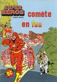 Cover Thumbnail for Super Héros (Arédit-Artima, 1979 series) #13