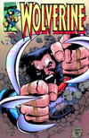 Cover Thumbnail for Wolverine (1988 series) #145 [Dynamic Forces Chrome Variant]