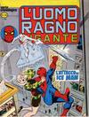 Cover for L'Uomo Ragno Gigante (Editoriale Corno, 1976 series) #35
