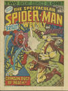 Cover for The Spectacular Spider-Man Weekly (Marvel UK, 1979 series) #336