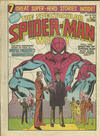 Cover for The Spectacular Spider-Man Weekly (Marvel UK, 1979 series) #341