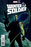 Cover for Winter Soldier (Marvel, 2012 series) #17 [Variant Edition]