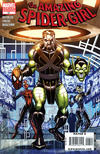 Cover Thumbnail for Amazing Spider-Girl (2006 series) #27 [Villain Variant]