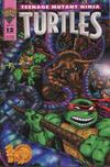 Cover for Teenage Mutant Ninja Turtles (Mirage, 1993 series) #12