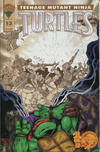 Cover for Teenage Mutant Ninja Turtles (Mirage, 1993 series) #13