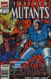 Cover Thumbnail for The New Mutants (1983 series) #91 [Newsstand Edition]
