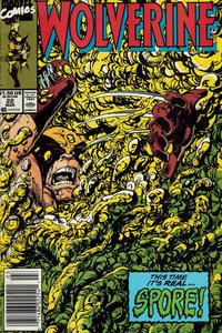 Cover Thumbnail for Wolverine (Marvel, 1988 series) #22 [Newsstand]