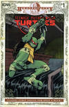 Cover for Teenage Mutant Ninja Turtles #1: Hundred Penny Press (IDW, 2013 series)