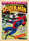 Cover for The Spectacular Spider-Man Weekly (Marvel UK, 1979 series) #355