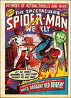 Cover for The Spectacular Spider-Man Weekly (Marvel UK, 1979 series) #340