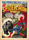 Cover for The Spectacular Spider-Man Weekly (Marvel UK, 1979 series) #342