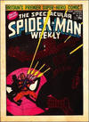 Cover for The Spectacular Spider-Man Weekly (Marvel UK, 1979 series) #344