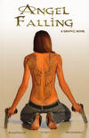 Cover Thumbnail for Angel Falling (2013 series)