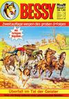 Cover for Bessy (Bastei Verlag, 1976 series) #17