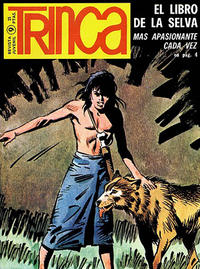 Cover Thumbnail for Trinca (Doncel, 1970 series) #9