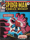 Cover for Spider-Man Comics Weekly (Marvel UK, 1973 series) #71