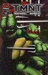 Cover for TMNT Movie Prequel (Mirage, 2007 series) #1