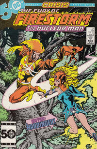 Cover Thumbnail for The Fury of Firestorm (DC, 1982 series) #41 [Direct Sales]