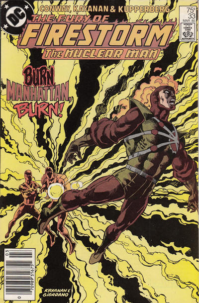 Cover for The Fury of Firestorm (DC, 1982 series) #33