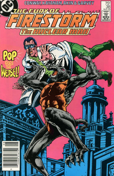 Cover for The Fury of Firestorm (DC, 1982 series) #38 [Direct Sales]
