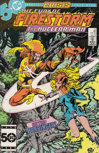 Cover for The Fury of Firestorm (DC, 1982 series) #41 [Direct Sales]