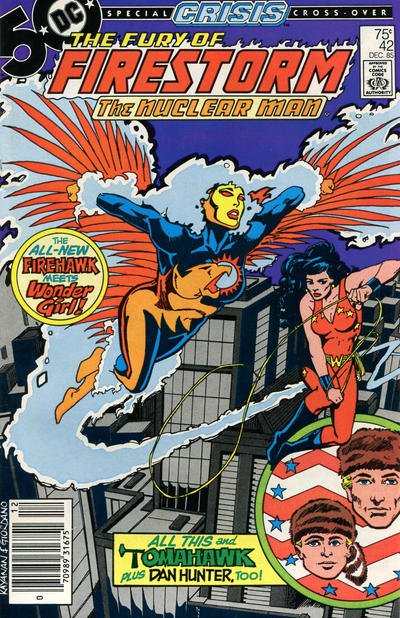Cover for The Fury of Firestorm (DC, 1982 series) #42 [Direct Sales]